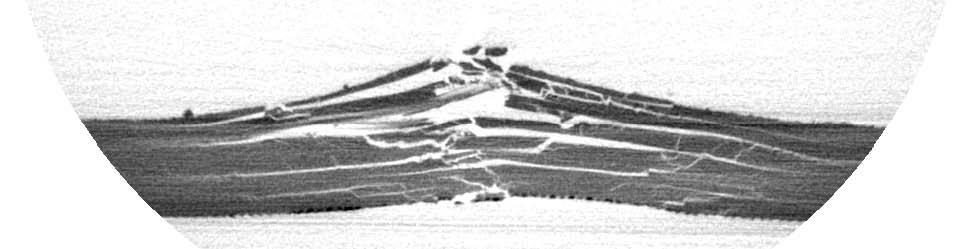 图1:第03号的影响,通过样本的切片裂缝可见的白色或明亮的色调,灰色的人工缺陷。